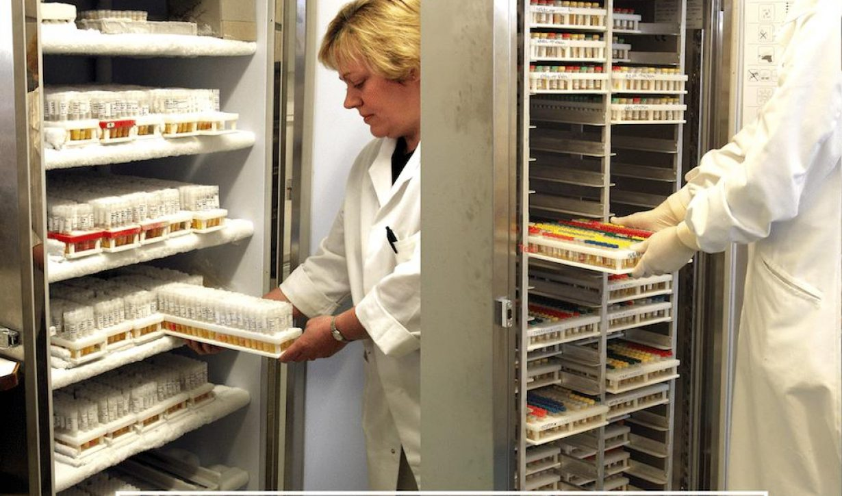 Increase the storage capacity of your existing cold rooms, fridges and freezers - Thumbnail Image